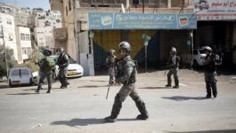 قوات الاحتلال تستولي