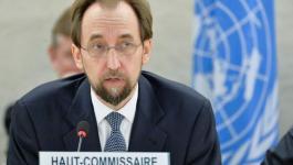 المفوض السامي لحقوق الإنسان يدعو لتحقيق مستقل بجرائم الاحتلال.jpg