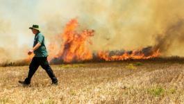 نشوب 5 حرائق في غلاف غزة بسبب البالونات الحارقة