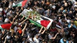 استشهاد لاجئ فلسطيني بسجون النظام السوري.jpg