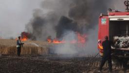 اندلاع نيران كثيفة في أحراش الأراضي المحتلة المحاذية لوسط قطاع غزّة