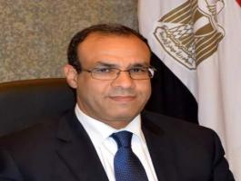 السفير-بدر-عبد-العاطي