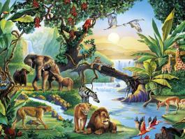 ما حكم الصور المجسمة من الحيوانات