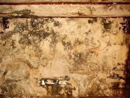 اكتشاف رسومات جدارية أثرية في كوريا الشمالية ذات قيمة تاريخية