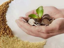 هل يجوز اخراج زكاة الفطر نقدا للاخت ؟