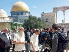 مئات المستوطنين يقتحمون باحات المسجد الأقصى بحراسة مشددة