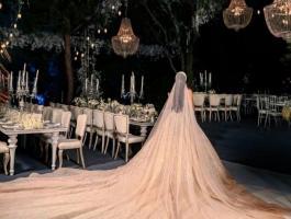 شاهد: عرس زفاف ابنة النائب نوار الساحلي يثير جدلا بلبنان
