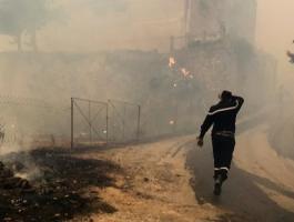 تجدد اندلاع الحرائق في الجزائر.. طالع التفاصيل