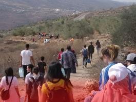 يوم عمل تطوعي لقطف ثمار الزيتون على أراضي قرية اسكاكا في سلفيت
