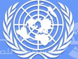 حقوق الانسان بالامم المتحدة