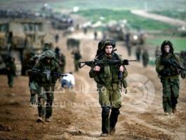مناورة للاحتلال