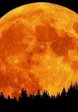 القمر العملاق