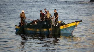 صيادين غزة