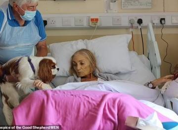 لحظة وداع سيدة بريطانية لحيواناتها الأليفة من فراش مرض عضال