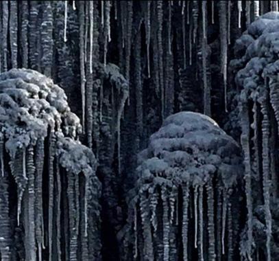 شاهد: كيف يبدو الثلج الأسود