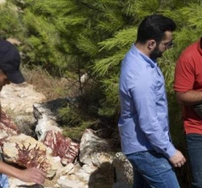 الإعلام العبري: فلسطينيون يعثرون على سجل لعمليات الجيش بالقدس