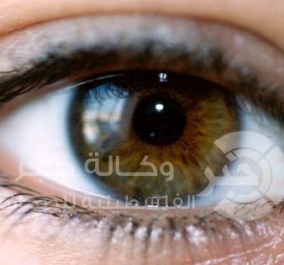 نعمة العين
