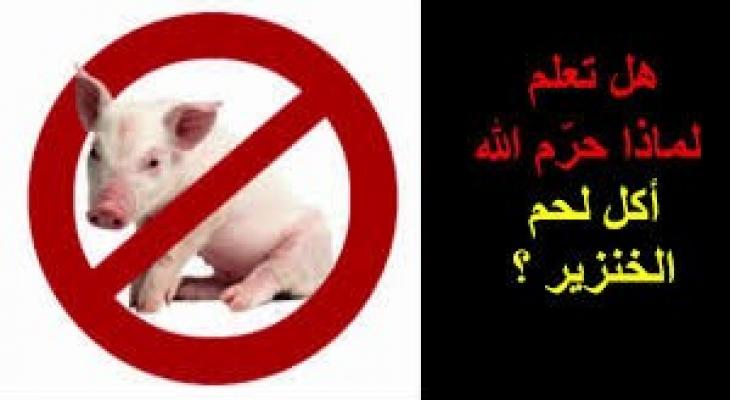 بالفيديو: ما السر في تحريم الميتة والدم ولحم الخنزير