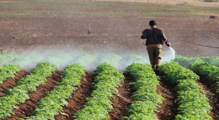 """غزّي يكبد """"إسرائيل"""" خسائر بـ45 مليون شيكل"""