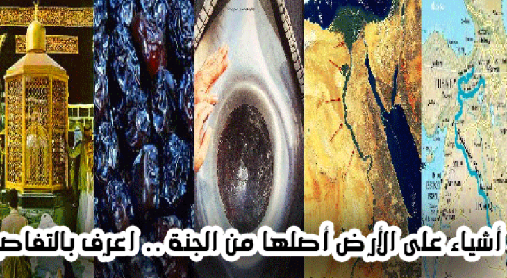 """بالفيديو : 5 أشياء موجودة في """"الدنيا"""" وهي أصلها من """"الجنة"""" منها واحدة فى مصر"""