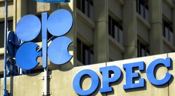 أوبك: تتوقع انكماش حصتها في سوق النفط