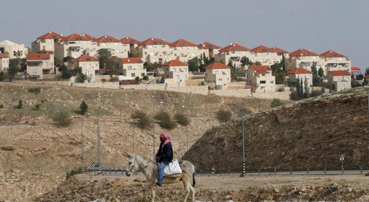 """دغلس لـ""""خبر"""": إسرائيل تسابق الزمن لإقامة كتلة استيطانية تفصل شمال الضفة عن جنوبها"""