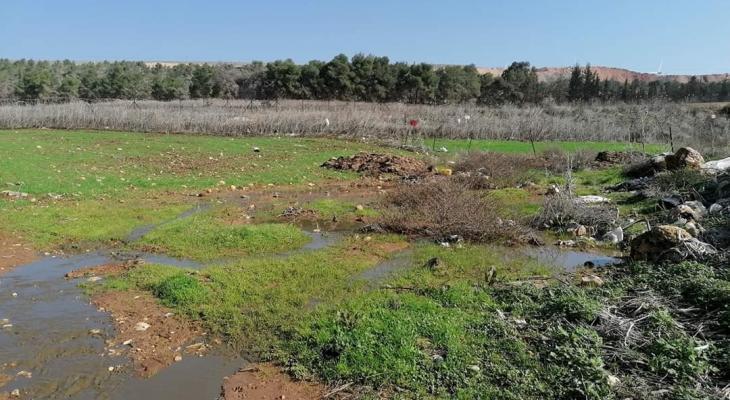 اغراق اراضي زراعية