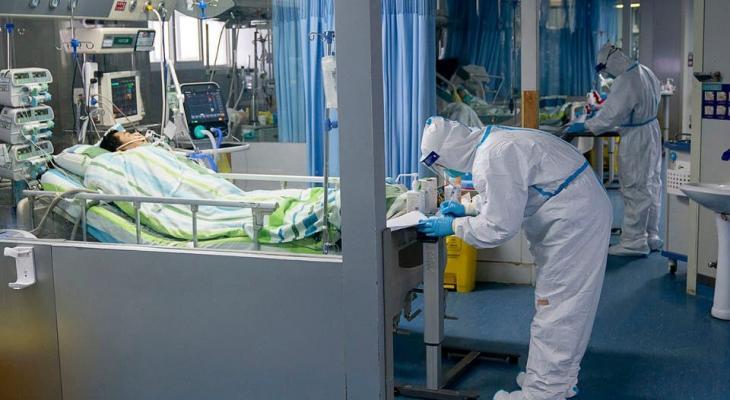 فيروس كورونا عمان