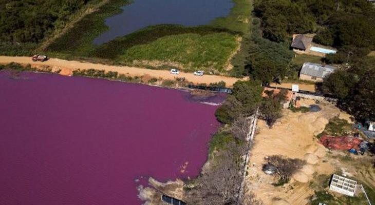 """شاهدوا: تحول بحيرة إلى اللون """"الأرجواني"""" من جانب واحد فقط يحير العلماء"""