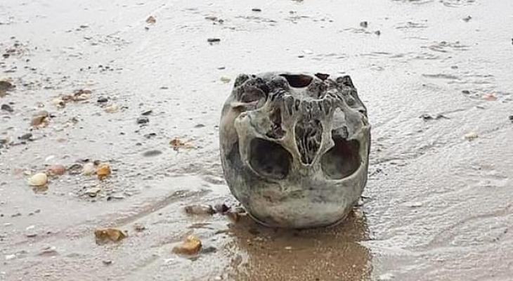 فتاة تكتشف جمجمة بشرية خلال نزهة على شاطى البحر بالمملكة المتحدة