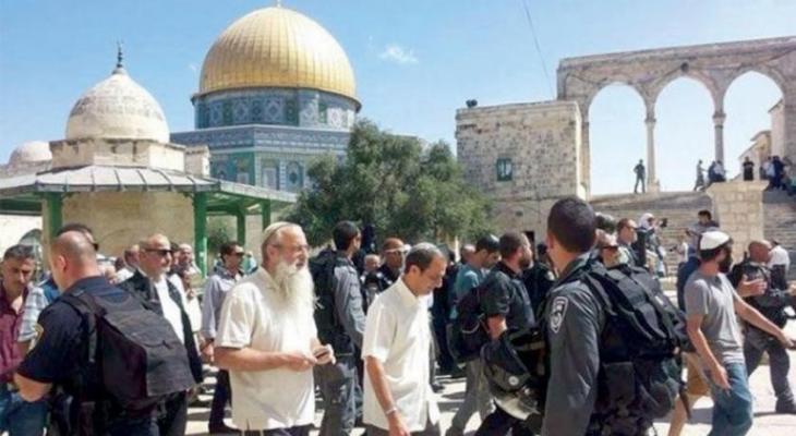 مستوطنون يقتحمون باحات المسجد الأقصى بحراسة مشددة
