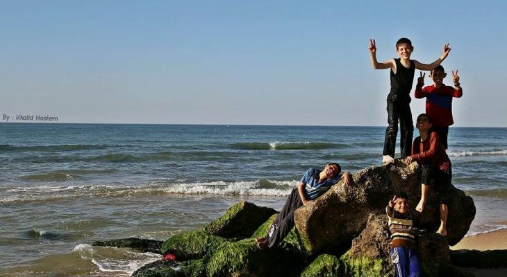 الاعشاب على بحر غزة