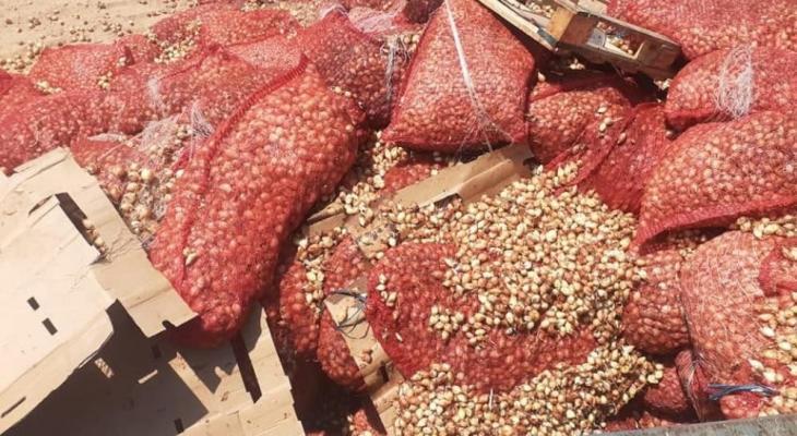 زراعة غزة تدين إقحام الشأن السياسي في الملف الزراعي