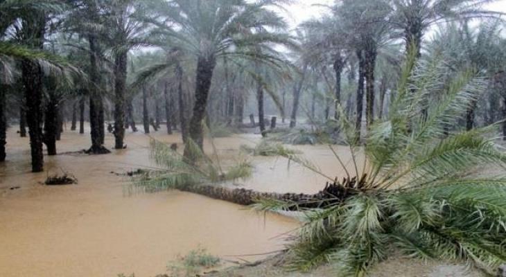 إعصار يضرب جزيرة سقطرى اليمنية وفقدان أثر 7 أشخاص