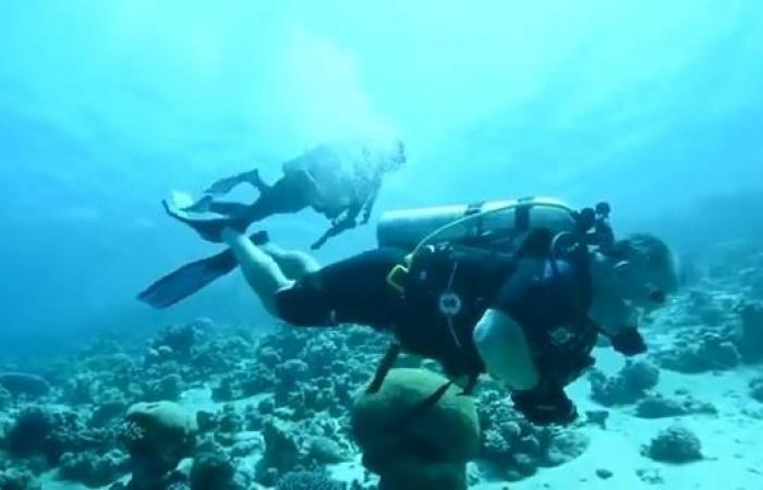 1581903097_بالفيديو..-العاهل-الأردني-ونجله-ينظفان-مياه-العقبة (1).jpg