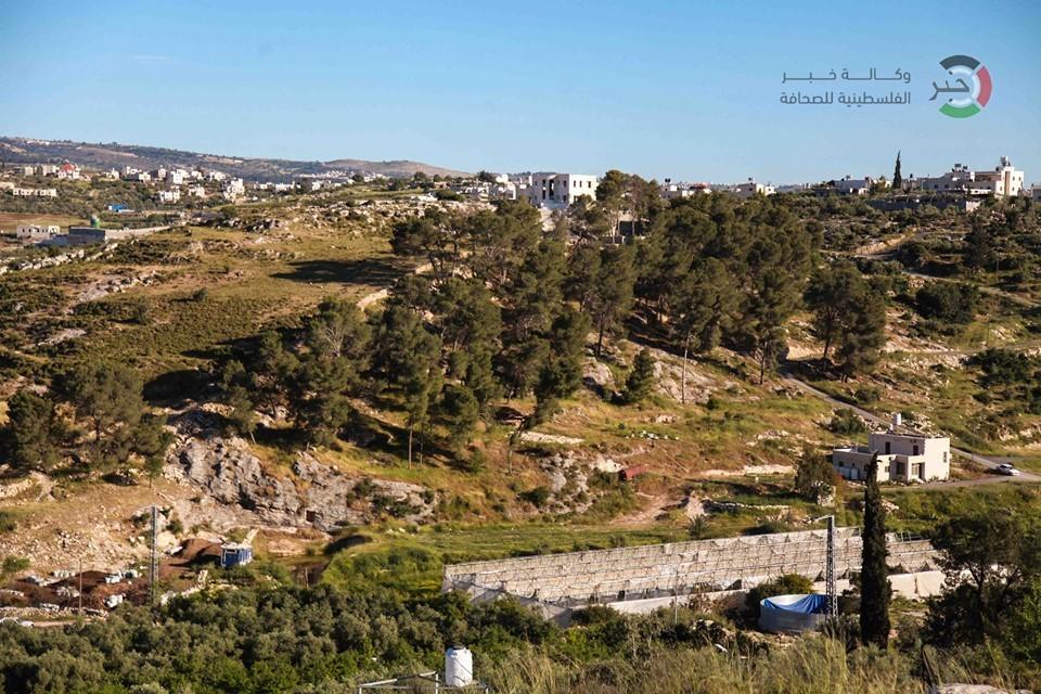 جمال طبيعة فلسطين 3SUZH
