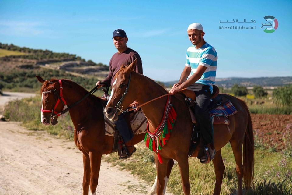 جمال طبيعة فلسطين YLKtm