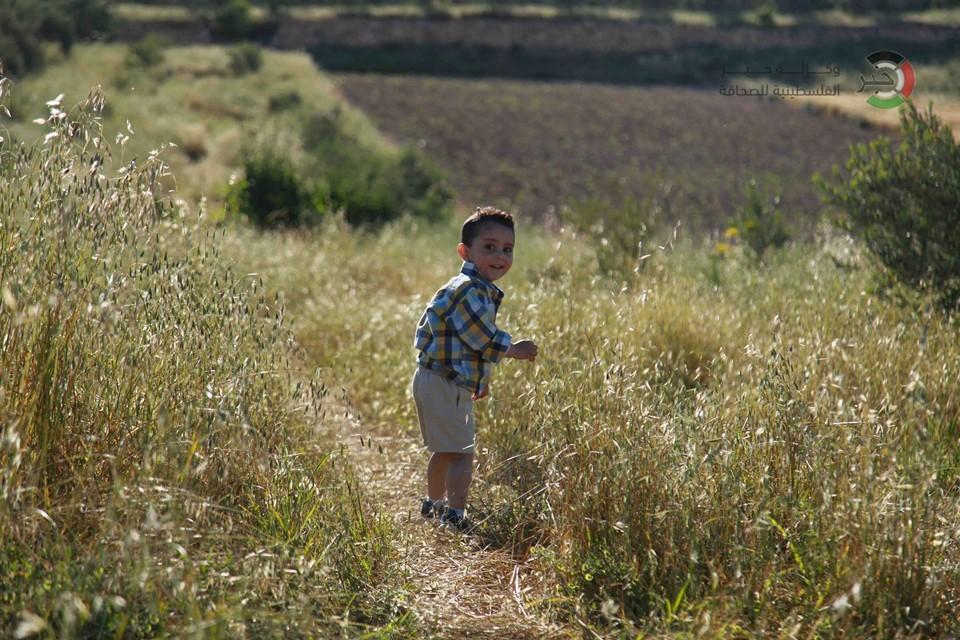 جمال طبيعة فلسطين L9nio