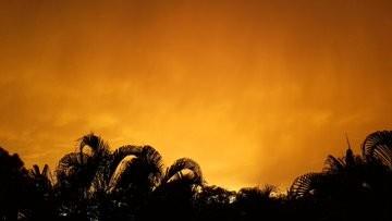 """بالصور: عاصفة صحراوية خطيرة """"تهدد"""" جنوب الولايات المتحدة"""