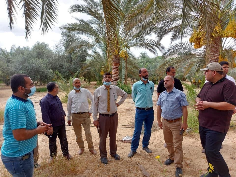 زراعة غزة تدعو لحماية المحررات من التعديات على أراضيها